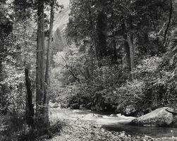 Ansel Adams, 'Tenaya Creek, Spring Rain, Yosemite', ca. 1948