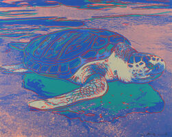 Andy Warhol, 'Turtle (FS II.360A', 1985