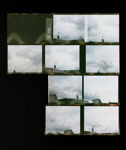 Zoe Leonard, 'Roll #11', 2006/16
