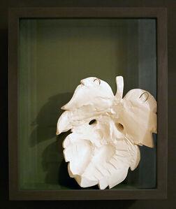 Meriç Algün Ringborg, 'Fig Leaf for David', 2015