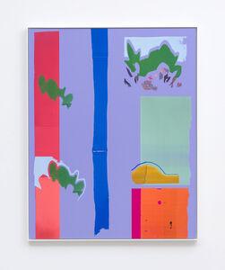Daniel Gordon, 'Smoke Bush and Nectarine Shadow', 2016