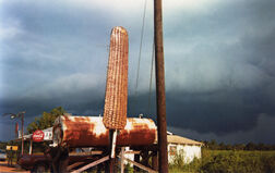 Corn Sign with Storm Cloud, Near Greensboro, Alabama
