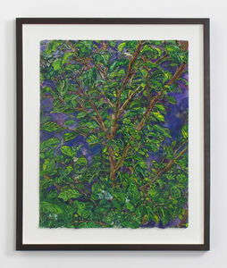 Beth Secor, 'Young Hawthorne Late Summer', 2011-2013