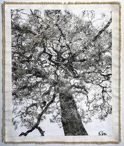 Bill Claps, 'Nanzenji Temple Tree II', 2019