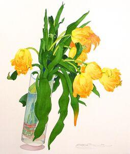Gary Bukovnik, 'Parrot Tulips'