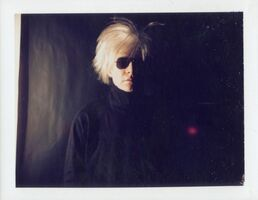 Andy Warhol, 'Polaroid Photograph of Self-Portrait with Fright Wig', 1986
