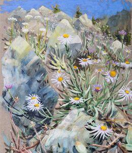 Chris Russell (American, BORN 1983), 'Alpine Aster', 2019
