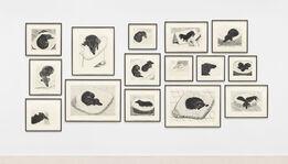 David Hockney, Dog Wall