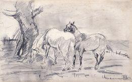 Henri de Toulouse-Lautrec, Horses