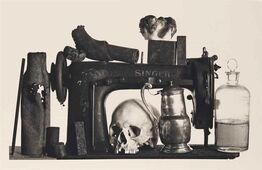 Irving Penn, Sewing Machine with 13 Objects, New York