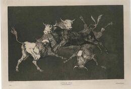 Francisco de Goya, Lluvia De Toros