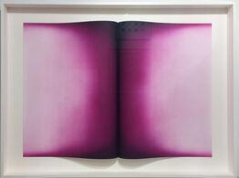 Anish Kapoor, Folds IV, magenta variant