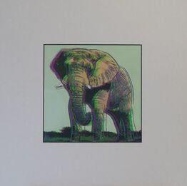 Andy Warhol, Elephant
