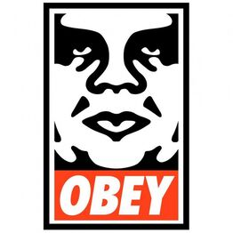 Shepard Fairey, Icon