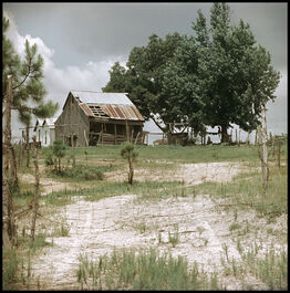Gordon Parks, Untitled, Shady Grove, Alabama