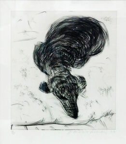 David Hockney, DOG WALL NUMBER 7