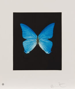 Damien Hirst, Providence, from Butterfly Etchings