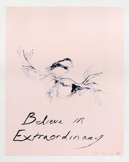 Tracey Emin, Believe In Extraordinary