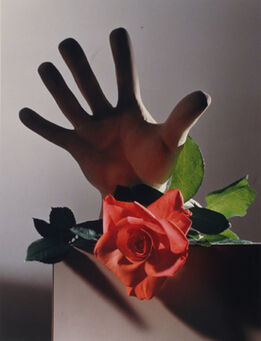 Horst P. Horst, Rose with a Cast of Michelangelo's Hand