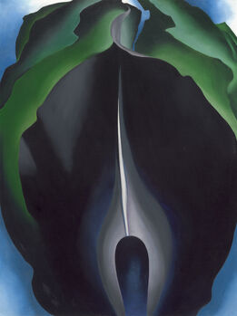 Georgia O'Keeffe, Jack-in-the-Pulpit No. IV
