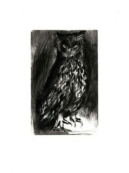 Jim Dine, Owl