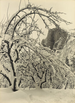 Ansel Adams, Half Dome, Apple Orchard, Winter, Yosemite