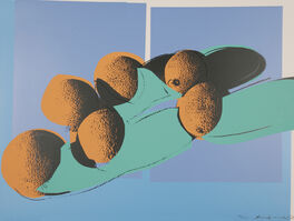 Andy Warhol, 'Space fruit: Still lifes', 1979