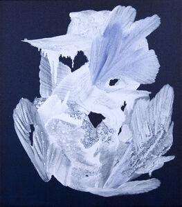 Celia Neubauer, 'S044', 2016