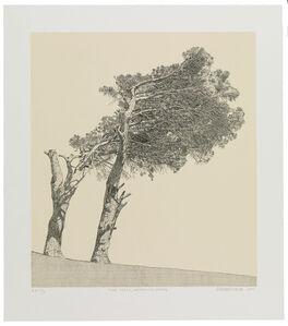 Anton Kannemeyer, 'Pine Trees, University Estate', 2017