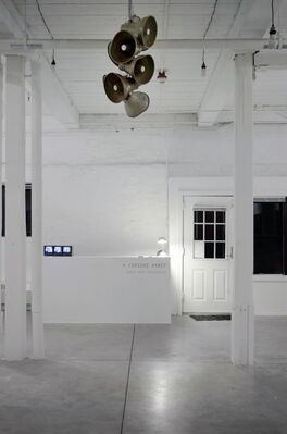 A Curious Dance, installation view