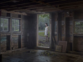 Gregory Crewdson, 'The Shed', 2013