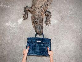 Tyler Shields, 'Gator Birkin Hands', 2012