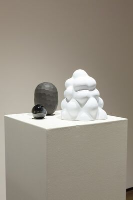 Anthropocene | Ashley Eliza Williams | The Cyclical Glow | Blanca Guerra-Echeverria, installation view