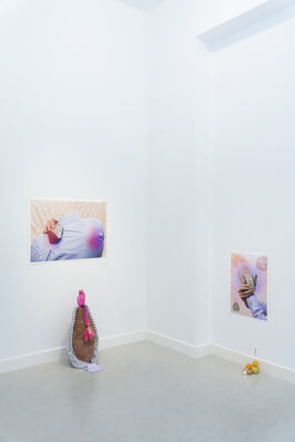 Cosmic Cry, installation view