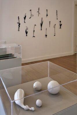 María José de la Macorra: Herbarium, installation view