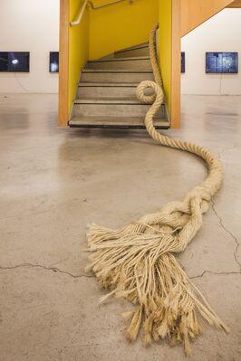 Janaina Mello Landini | Ciclotrama Onda - 20, installation view