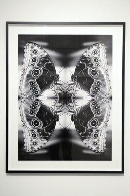 "Indira Cesarine ""Vita et Mors"", installation view"