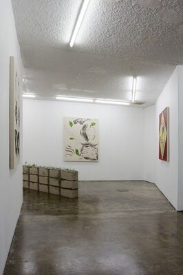 PABLO CARRILLO / OTRA SOMBRA, installation view