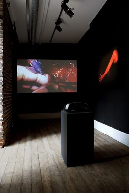 · FLESH · BLOOD · SUBSTANCE ·, installation view