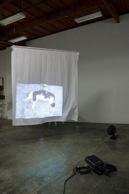 Simone Forti, installation view