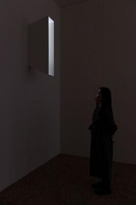 Daniel Steegmann Mangrané, Fog Dog, installation view