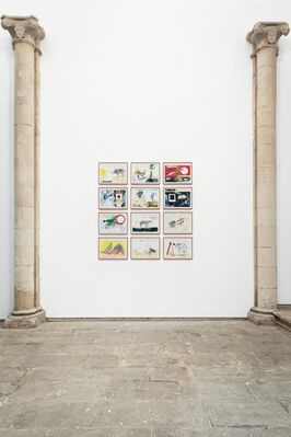 PAVEL PEPPERSTEIN. Animals and Supremas, installation view