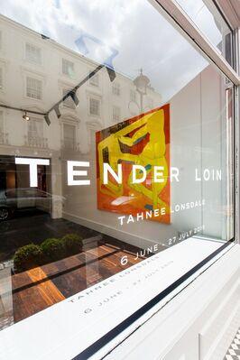 Tender Loin, installation view