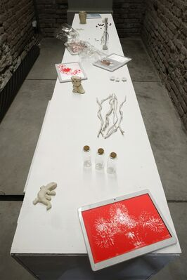 Fabio Santacroce: If The Poor Stopped Reproducing, installation view