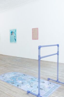 the little baby show, installation view