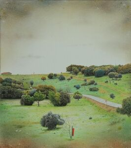 Francisco Roa, 'Albatages II'