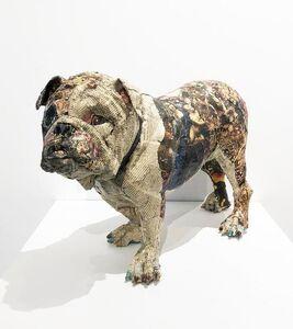 Will Kurtz, 'Bulldog', 2014