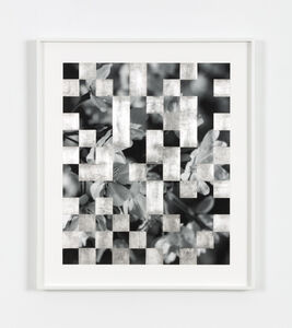 Bing Wright, 'Cherry Tree Grid 012.1', 2017