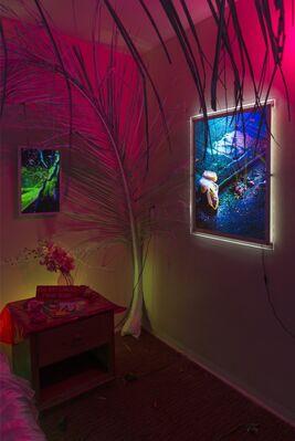 Castor Gallery at SATELLITE 2016, installation view