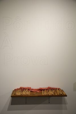 Pôr tudo à prova (Put everything on the test) / Sinapses (Synapses), installation view